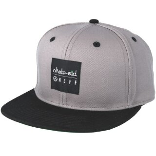 Skate Aid Daily Cap - grey