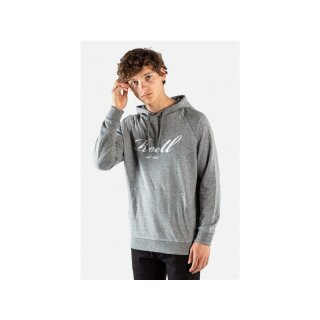Big Logo Kapuzensweater - grey melange